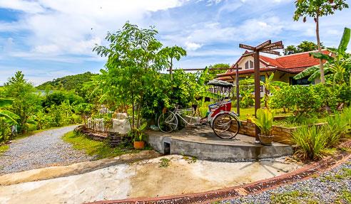Business – Cooking Class / Organic Farm – North-East Of Koh Samui – Bangrak